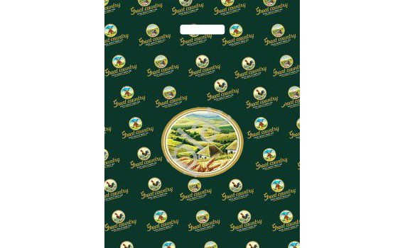 Пакет ПЭ с вырубной ручкой 40х50+6 (100) 2 (Большая страна)