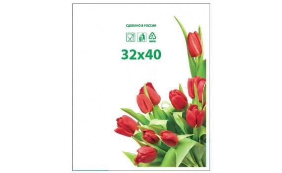 Пакет фасовочный, ПНД 32х40 (12) в пластах Тюльпаны фото (арт 12050)