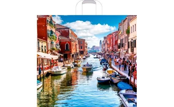 Пакет ПЭ с петлевой ручкой 40х36+8 (70) (Венеция нью)