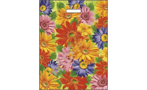 Пакет ПЭ с вырубной ручкой 38х47+6 (60) ламинация (Цветы)