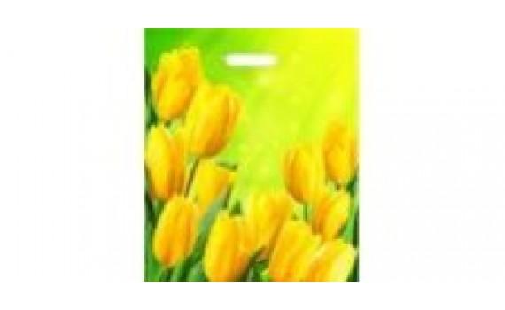 Пакет ПЭ с вырубной ручкой 38х45+6 (60) глянец (Солнечные тюльпаны)