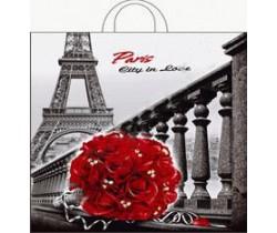 Пакет ПЭ с петлевой ручкой 40х42+6 (50) (Город любви)