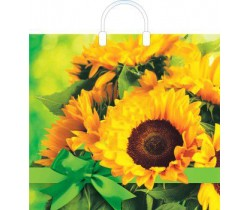 Пакет ПЭ с пластмассовыми ручками 38x35+10 (100) глянец (Яркое солнце)