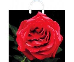 Пакет ПЭ с пластмассовыми ручками 38x35+10 (100) глянец (Красная роза)