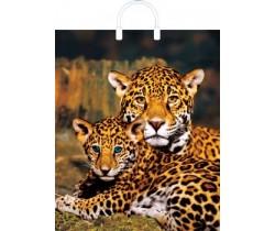 Пакет ПЭ с пластмассовыми ручками 40х44+5 (80) глянец (Мама с котёнком)