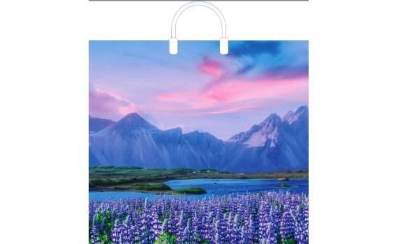 Пакет ПЭ с пластмассовыми ручками 31х40 (70) глянец (В горах)